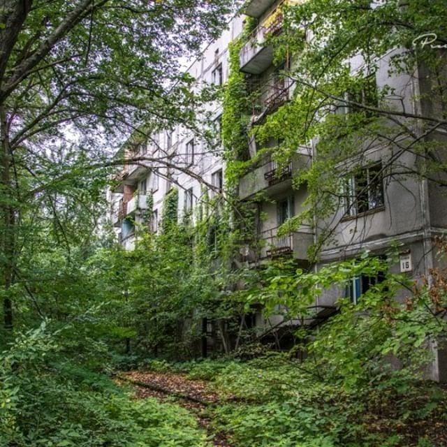 Tento obrázok nemá vyplnený ALT popisok, jeho názov je Chernobyl.jpg